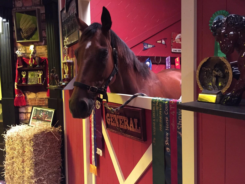 LADBROKES_Horse